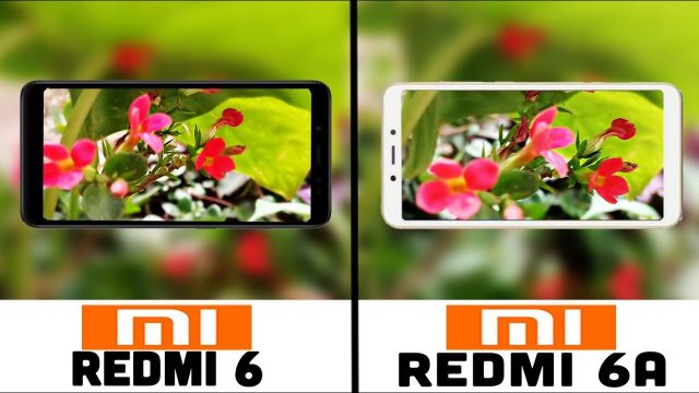 Redmi 6 vs Redmi 6a